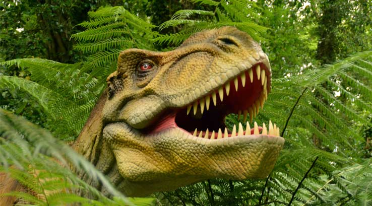 Combe Martin Wildlife and Dinosaur Park, Devon