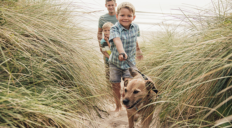 A boy walking his dog through sand dunes with his family behind him