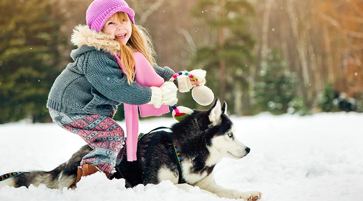 Girl with a dog in the snow