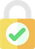 Web secure icon