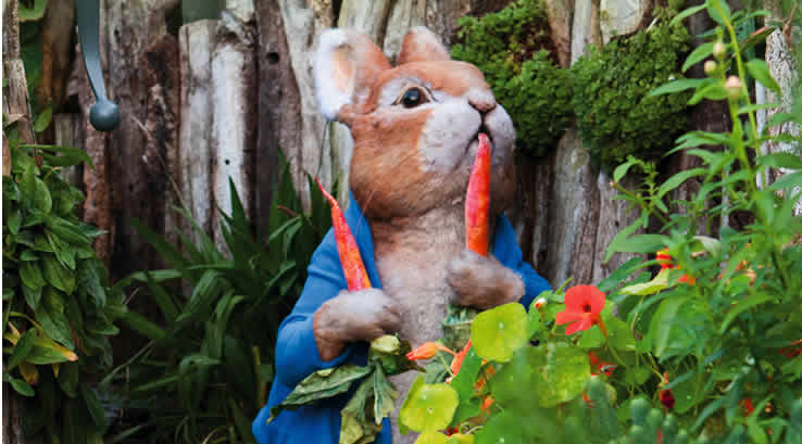 Peter Rabbit at Beatrix Potter World
