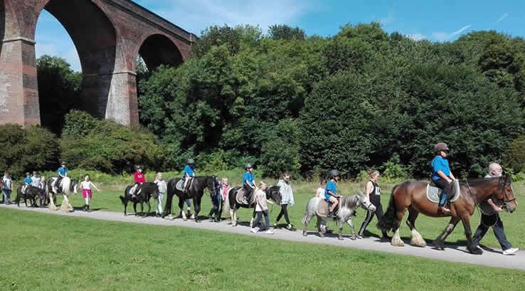 Large group ponytrekking under a bridge