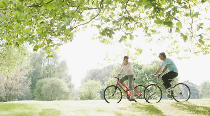Couple riding bicycles beneath a tree