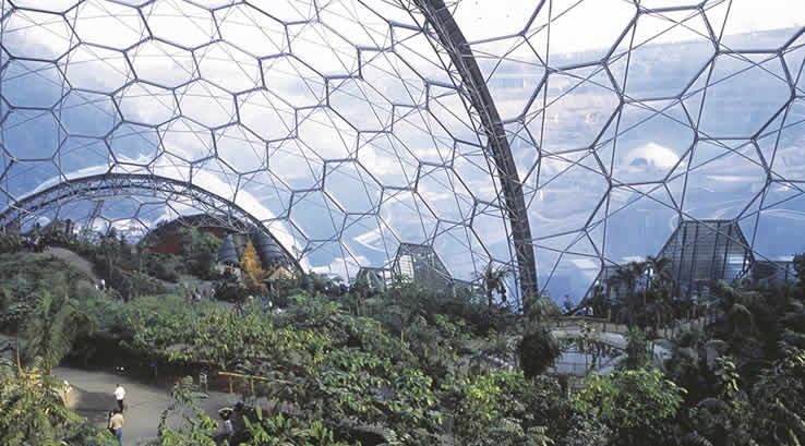 View inside a greenhouse at the Eden Project