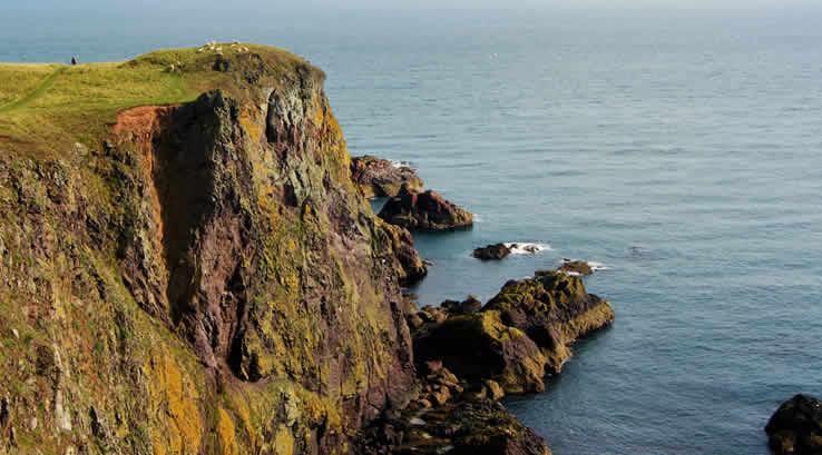 The cliffs at St Abbs Head