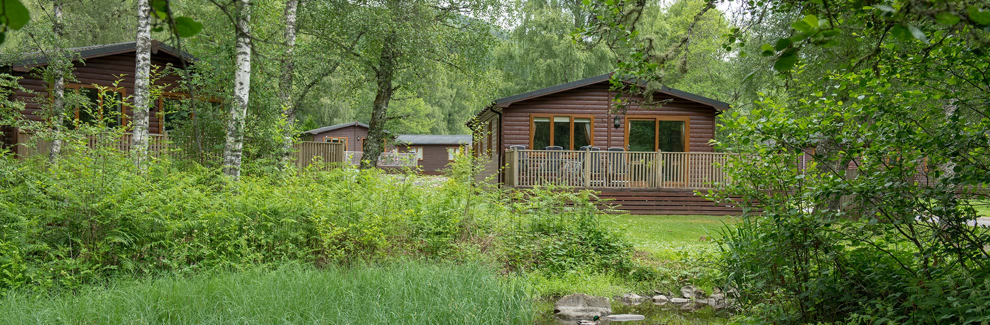Wooden lodges with verandas at Tummel Valley Holiday Park