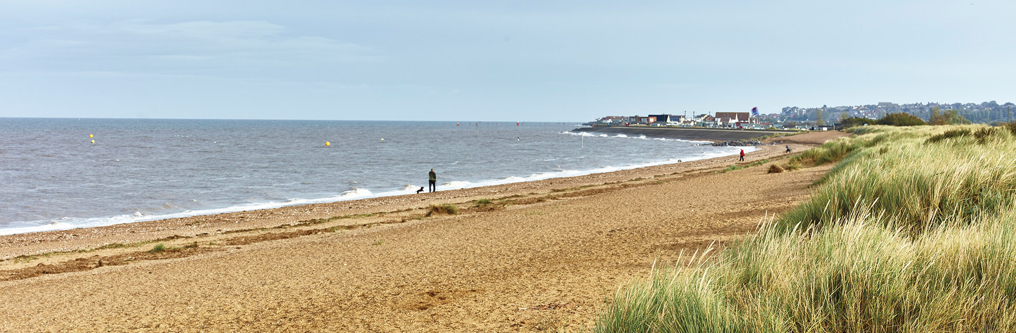 A man walking his dog on a shingle beach with grassy dunes