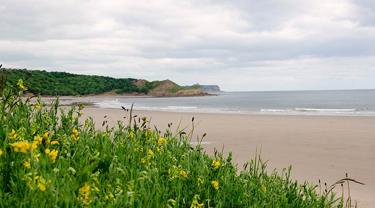 The sand dunes and beach at Cayton Bay